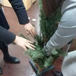 新クリスマスツリー★