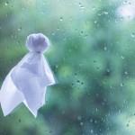 梅雨入りそして台風!?