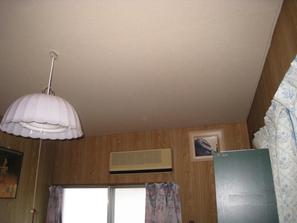 天井クロス-1